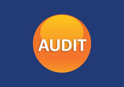 Labour Provider Social Compliance Audits